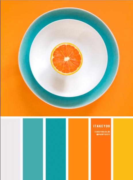 6 Tips hay về cách chọn màu sắc khi thiết kế ứng dụng di động năm 2020